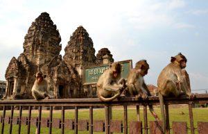 Lopburi monos Ayutthayah Ang thong