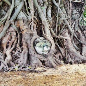 mahathat Ayutthayah templos