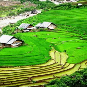 Lao Chai guia en tailandia Sapa Vietnam